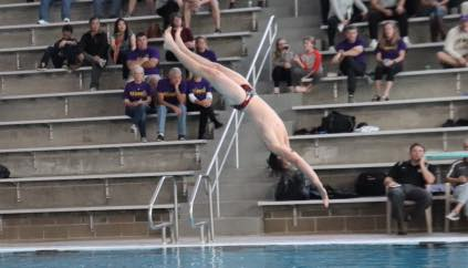 Divers place at Blue Division Conference Championship meet